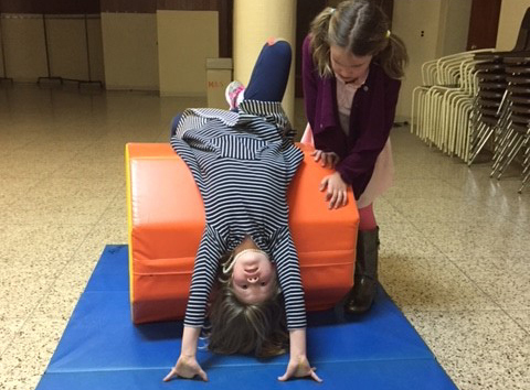 Gymnastics and Body Movement