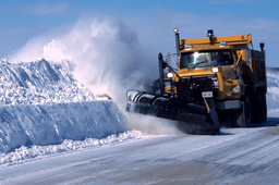 From the Head: On Snow Plow Parenting